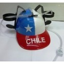 Casco Cervecero Chile